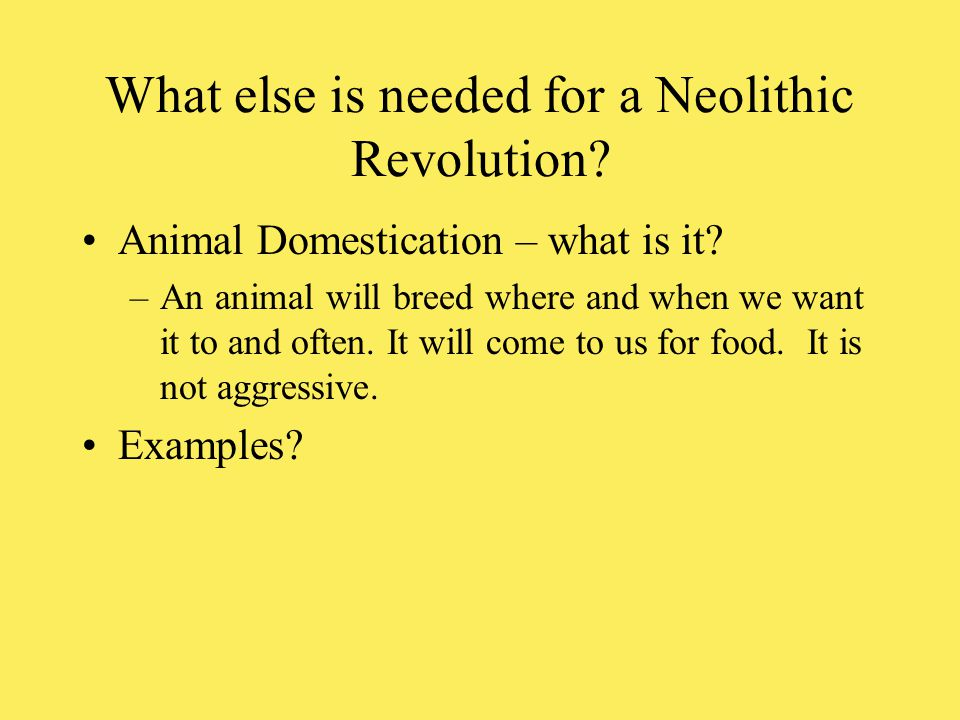 What else is needed for a Neolithic Revolution? Animal Domestication – what is it? –An animal will breed where and when we want it to and often. It wi