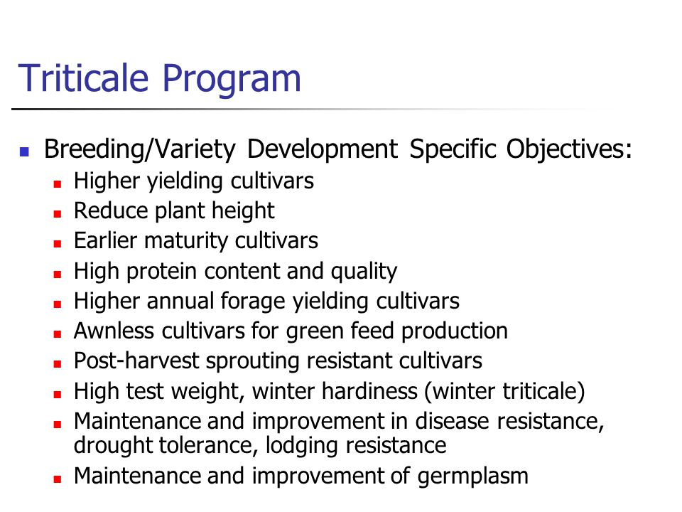 Triticale Program Breeding/Variety Development Specific Objectives: Higher yielding cultivars Reduce plant height Earlier maturity cultivars High protein content and quality Higher annual forage yielding cultivars Awnless cultivars for green feed production Post-harvest sprouting resistant cultivars High test weight, winter hardiness (winter triticale) Maintenance and improvement in disease resistance, drought tolerance, lodging resistance Maintenance and improvement of germplasm