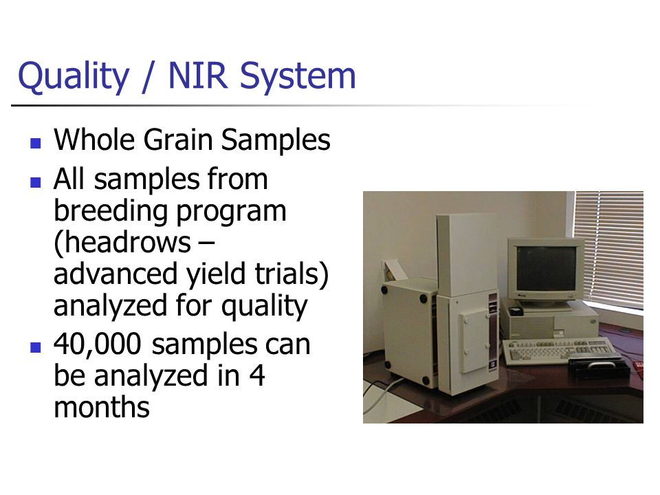 Quality / NIR System Whole Grain Samples All samples from breeding program (headrows – advanced yield trials) analyzed for quality 40,000 samples can be analyzed in 4 months