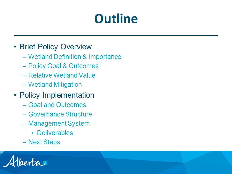 Outline Brief Policy Overview –Wetland Definition & Importance –Policy Goal & Outcomes –Relative Wetland Value –Wetland Mitigation Policy Implementation –Goal and Outcomes –Governance Structure –Management System Deliverables –Next Steps