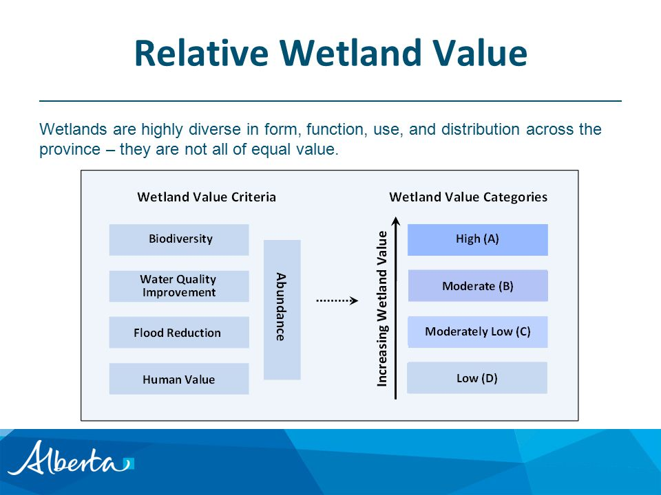 Relative Wetland Value Wetlands are highly diverse in form, function, use, and distribution across the province – they are not all of equal value.