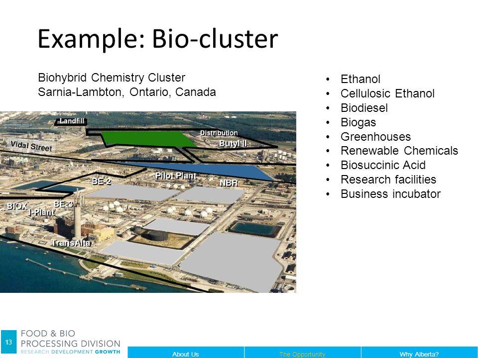 13 Example: Bio-cluster Biohybrid Chemistry Cluster Sarnia-Lambton, Ontario, Canada Ethanol Cellulosic Ethanol Biodiesel Biogas Greenhouses Renewable