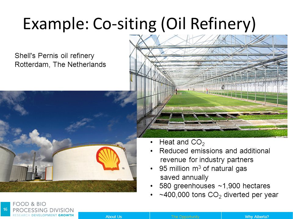 Example: Co-siting (Oil Refinery) 16 Shell s Pernis oil refinery Rotterdam, The Netherlands Heat and CO 2 Reduced emissions and additional revenue for industry partners 95 million m 3 of natural gas saved annually 580 greenhouses ~1,900 hectares ~400,000 tons CO 2 diverted per year About UsThe OpportunityWhy Alberta.
