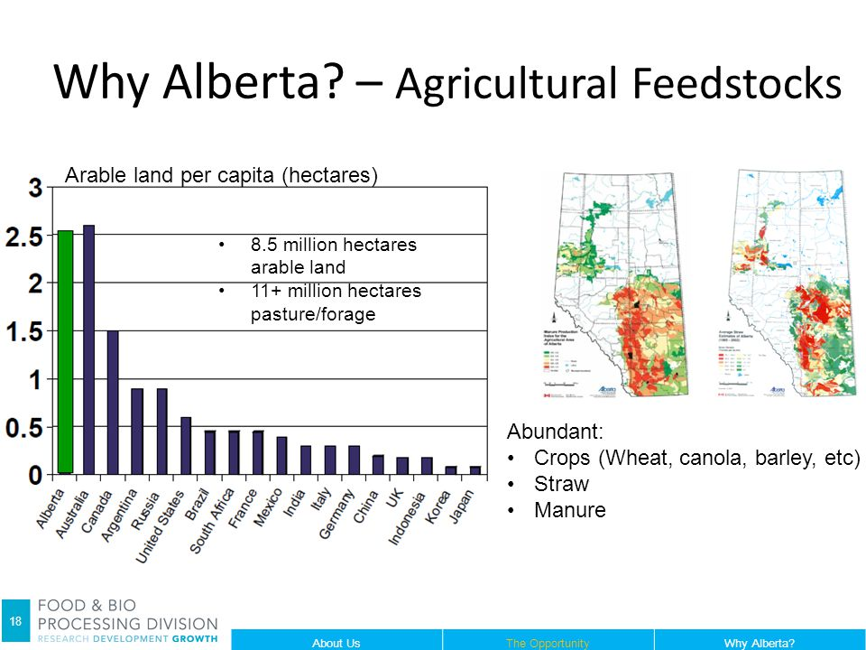 Arable land per capita (hectares) 8.5 million hectares arable land 11+ million hectares pasture/forage Abundant: Crops (Wheat, canola, barley, etc) Straw Manure Why Alberta.