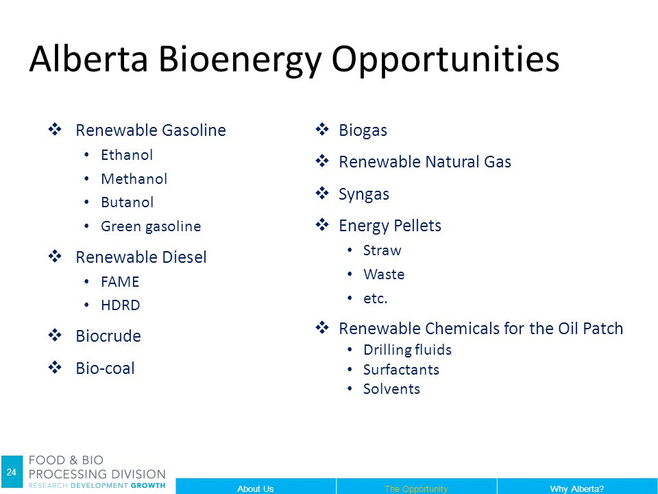 Alberta Bioenergy Opportunities  Renewable Gasoline Ethanol Methanol Butanol Green gasoline  Renewable Diesel FAME HDRD  Biocrude  Bio-coal  Biogas  Renewable Natural Gas  Syngas  Energy Pellets Straw Waste etc.