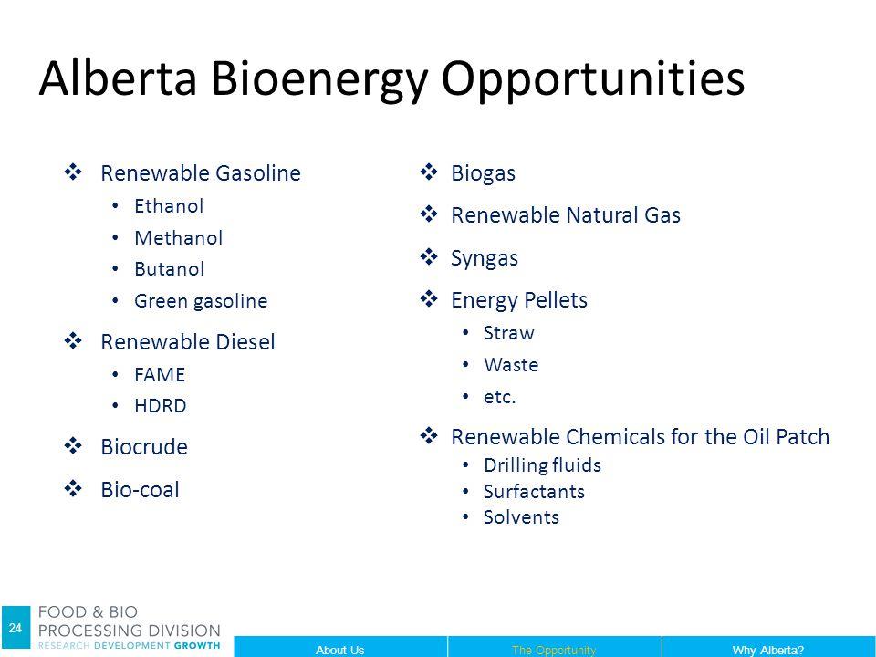 Alberta Bioenergy Opportunities  Renewable Gasoline Ethanol Methanol Butanol Green gasoline  Renewable Diesel FAME HDRD  Biocrude  Bio-coal  Biogas  Renewable Natural Gas  Syngas  Energy Pellets Straw Waste etc.