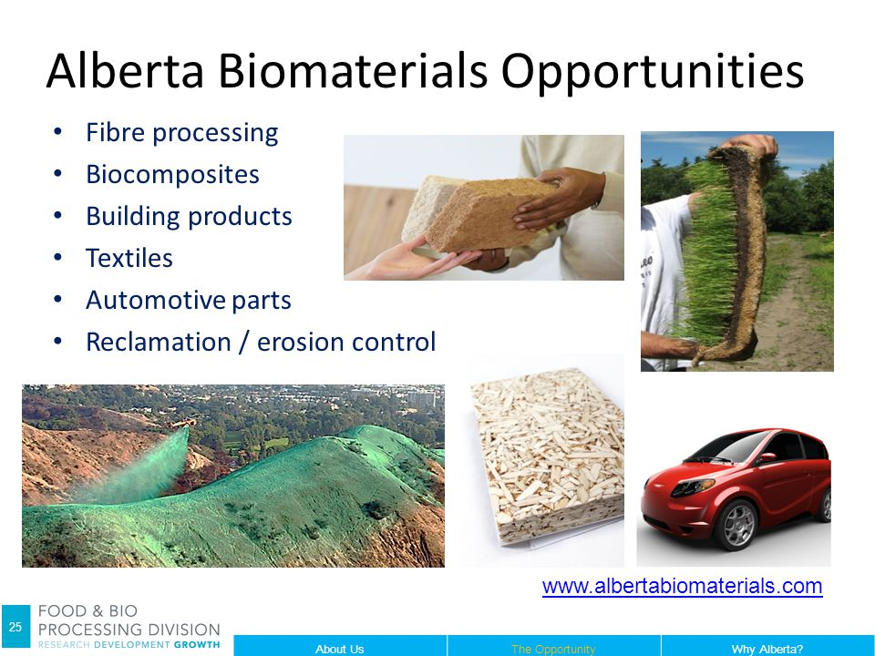 Alberta Biomaterials Opportunities Fibre processing Biocomposites Building products Textiles Automotive parts Reclamation / erosion control www.albertabiomaterials.com 25 About UsThe OpportunityWhy Alberta