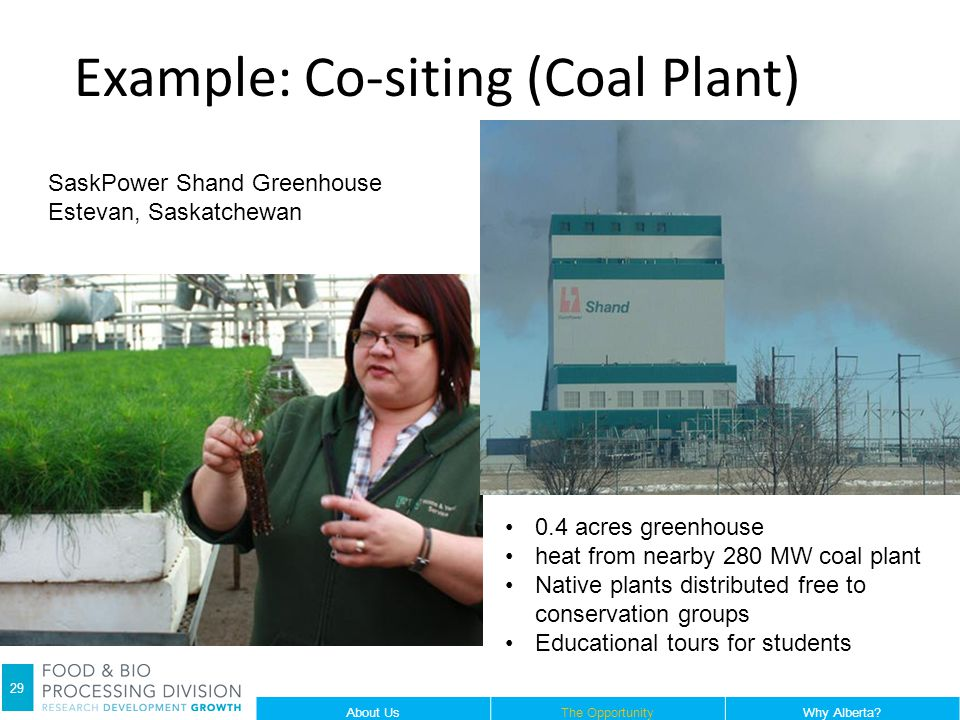 Example: Co-siting (Coal Plant) 29 SaskPower Shand Greenhouse Estevan, Saskatchewan 0.4 acres greenhouse heat from nearby 280 MW coal plant Native plants distributed free to conservation groups Educational tours for students About UsThe OpportunityWhy Alberta.