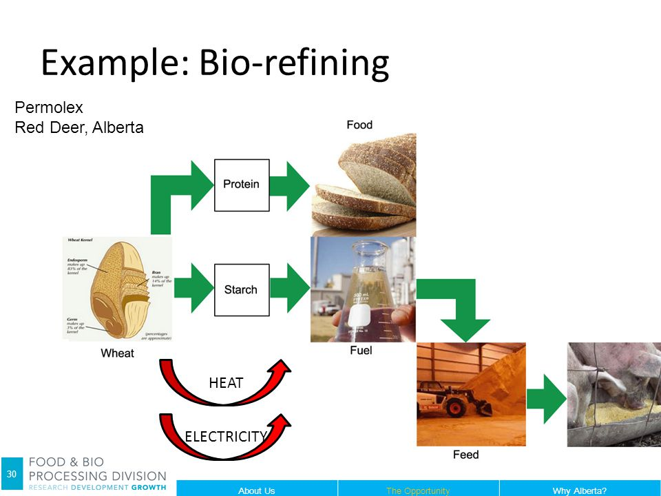 Example: Bio-refining HEAT ELECTRICITY Permolex Red Deer, Alberta 30 About UsThe OpportunityWhy Alberta?