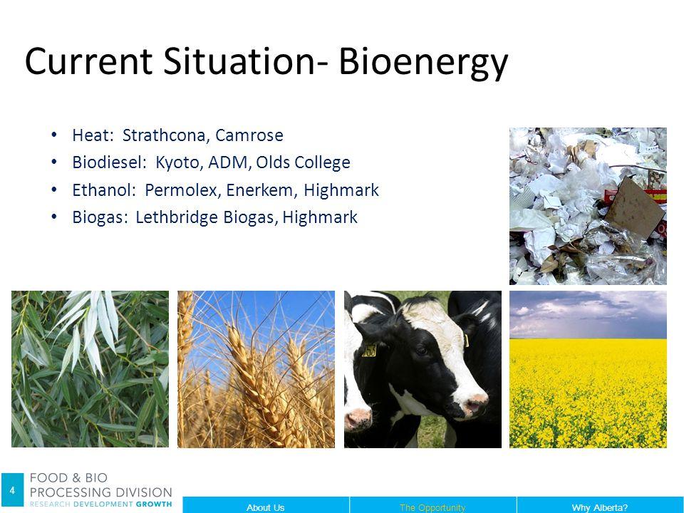 Heat: Strathcona, Camrose Biodiesel: Kyoto, ADM, Olds College Ethanol: Permolex, Enerkem, Highmark Biogas: Lethbridge Biogas, Highmark Current Situation- Bioenergy 4 About UsThe OpportunityWhy Alberta