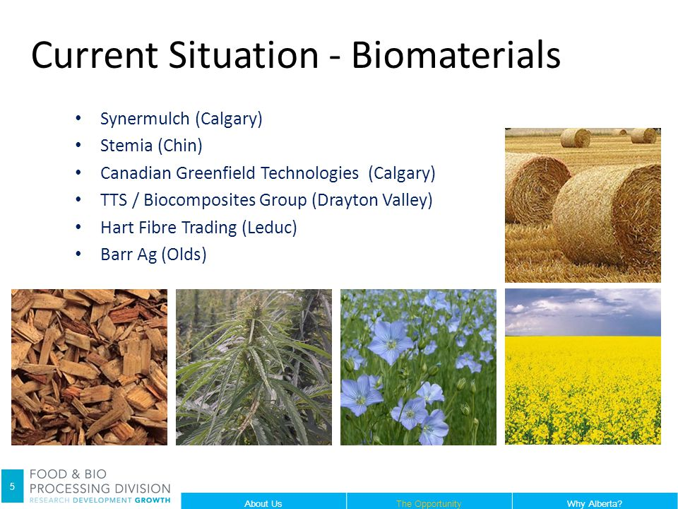 Synermulch (Calgary) Stemia (Chin) Canadian Greenfield Technologies (Calgary) TTS / Biocomposites Group (Drayton Valley) Hart Fibre Trading (Leduc) Barr Ag (Olds) Current Situation - Biomaterials 5 About UsThe OpportunityWhy Alberta