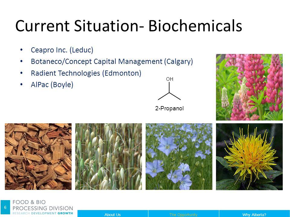 Ceapro Inc. (Leduc) Botaneco/Concept Capital Management (Calgary) Radient Technologies (Edmonton) AlPac (Boyle) Current Situation- Biochemicals 2-Prop