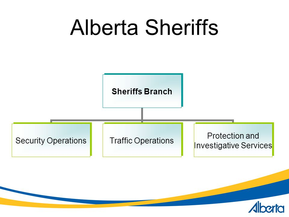 Alberta Sheriffs Sheriffs Branch Security Operations Traffic Operations Protection and Investigative Services