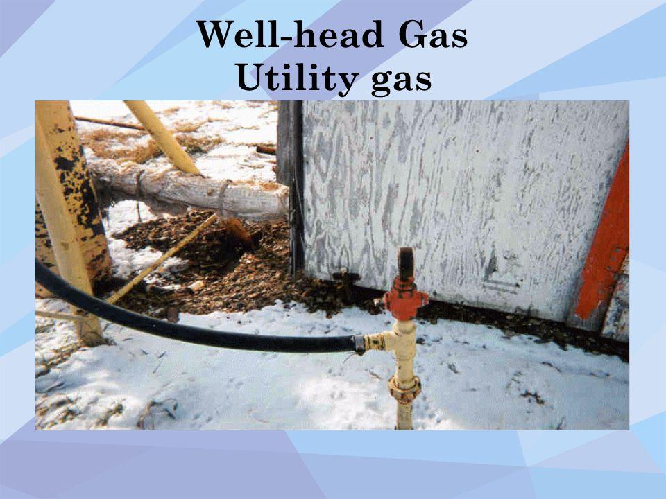 Well-head Gas Utility gas