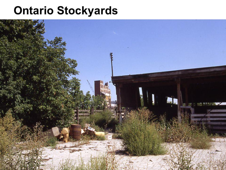 Ontario Stockyards