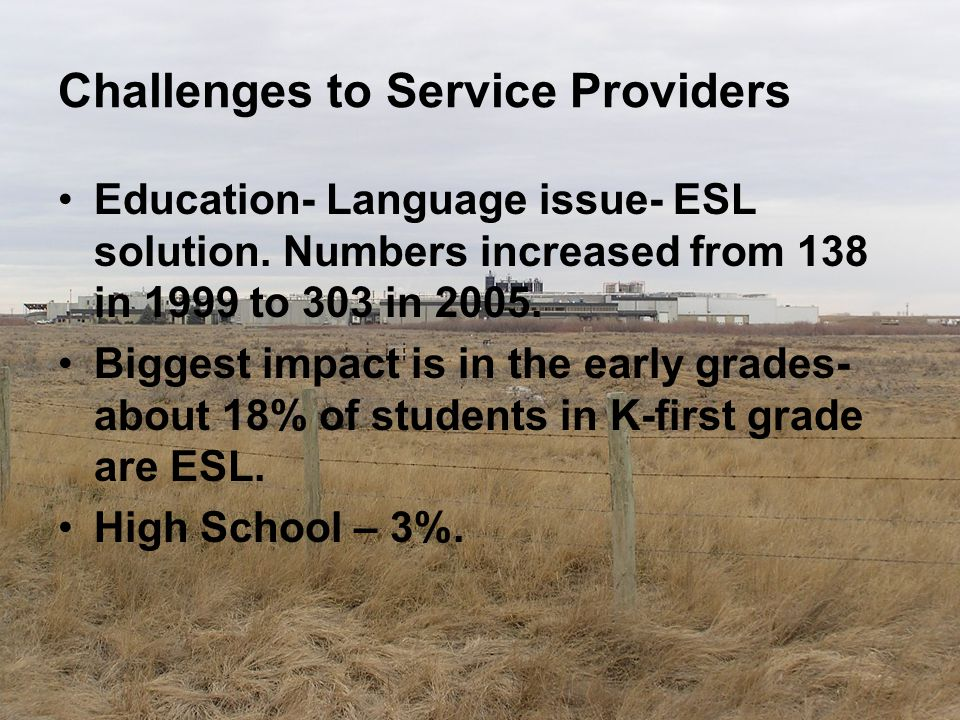 Challenges to Service Providers Education- Language issue- ESL solution. Numbers increased from 138 in 1999 to 303 in 2005. Biggest impact is in the e