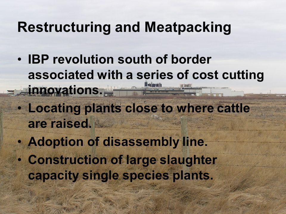 Restructuring and Meatpacking IBP revolution south of border associated with a series of cost cutting innovations. Locating plants close to where catt
