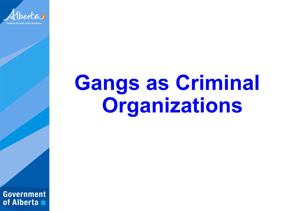 Gangs as Criminal Organizations