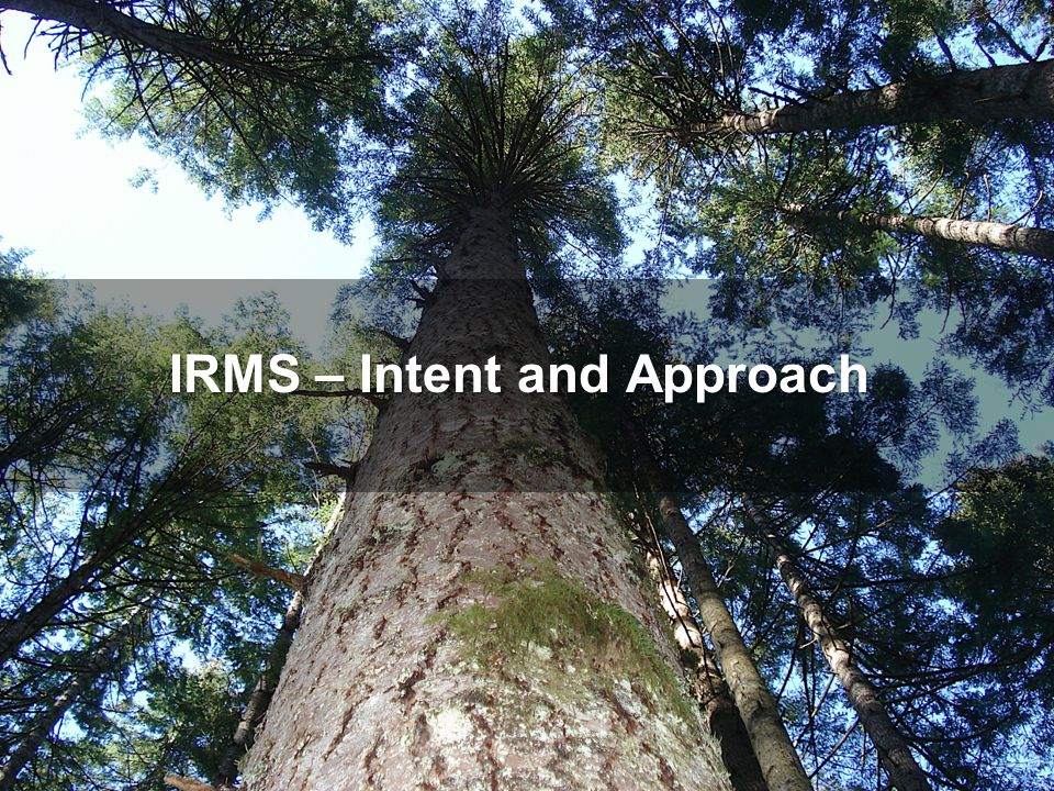 The IRM System is the means by which Alberta will achieve responsible resource stewardship.