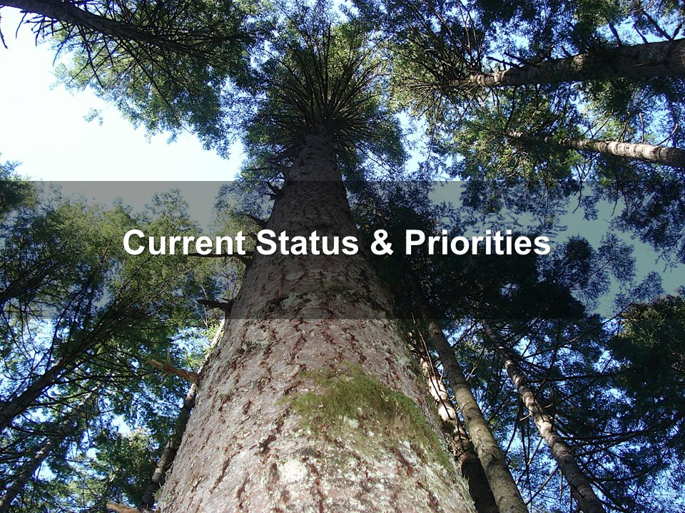 Priorities: Regional Planning (Clear outcomes that provide common goals) LARP effective Sept 2012 SSRP – targeting fall 2014 to come into effect o Public review of the draft plan ended on February 28.