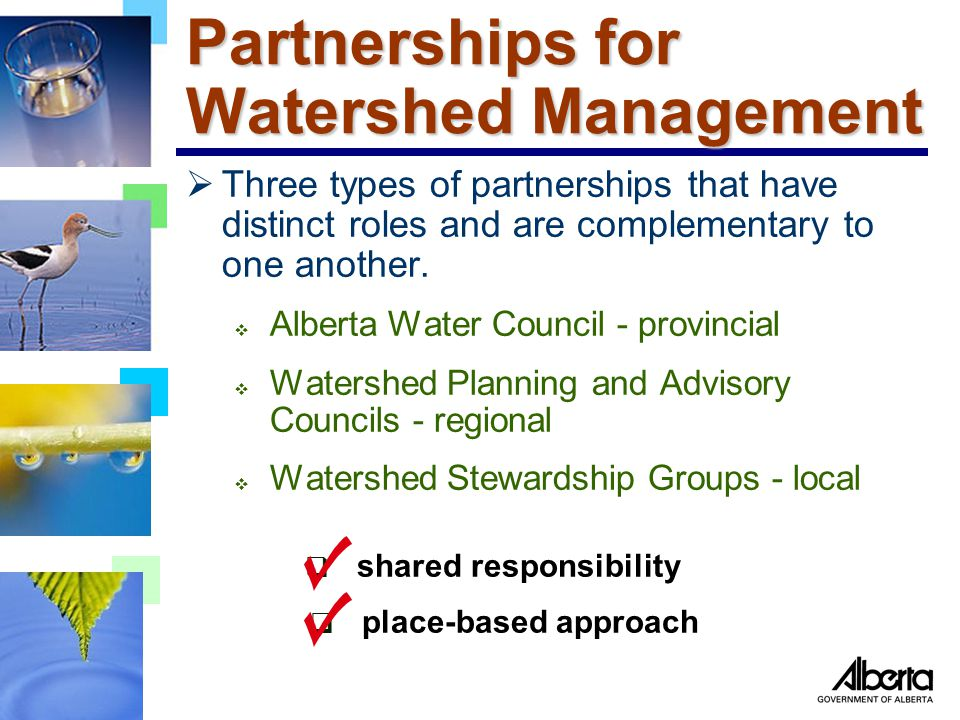 Partnerships for Watershed Management  Three types of partnerships that have distinct roles and are complementary to one another.