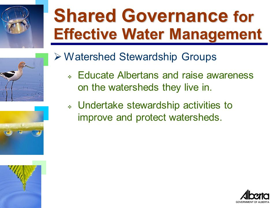 Shared Governance for Effective Water Management  Watershed Stewardship Groups  Educate Albertans and raise awareness on the watersheds they live in.