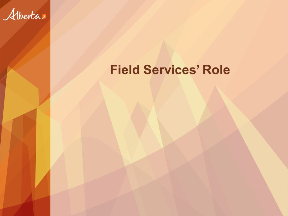 Field Services' Role