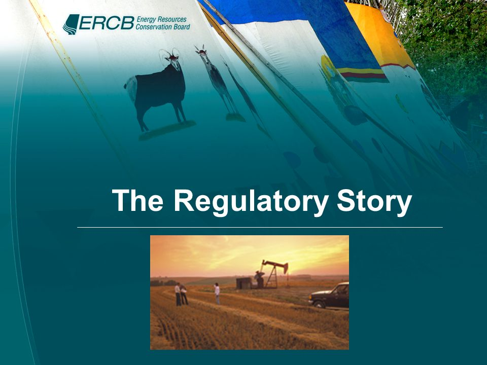 The Regulatory Story