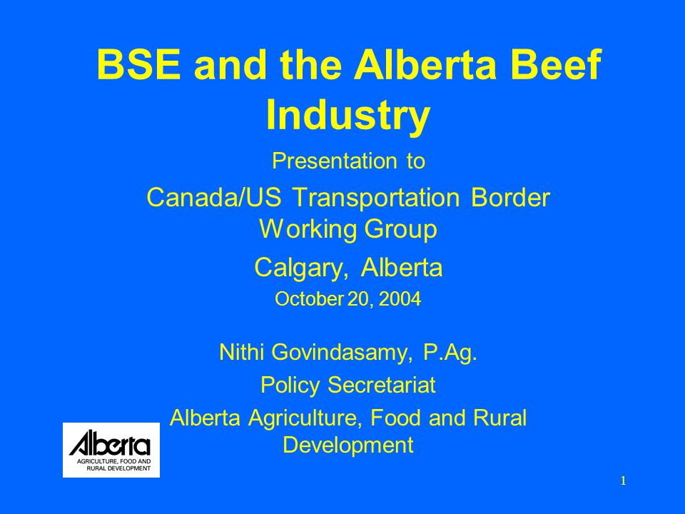 1 BSE and the Alberta Beef Industry Presentation to Canada/US Transportation Border Working Group Calgary, Alberta October 20, 2004 Nithi Govindasamy, P.Ag.