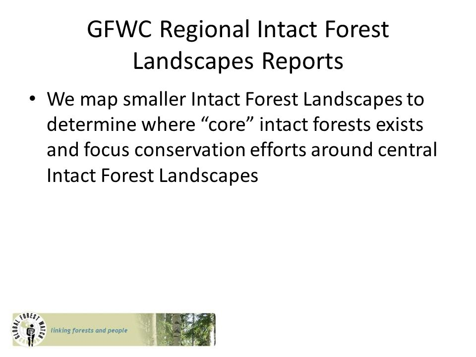 GFWC Regional Intact Forest Landscapes Reports We map smaller Intact Forest Landscapes to determine where core intact forests exists and focus conservation efforts around central Intact Forest Landscapes