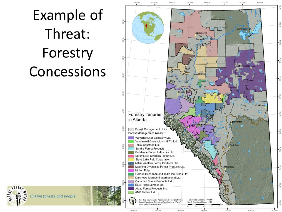 Example of Threat: Forestry Concessions