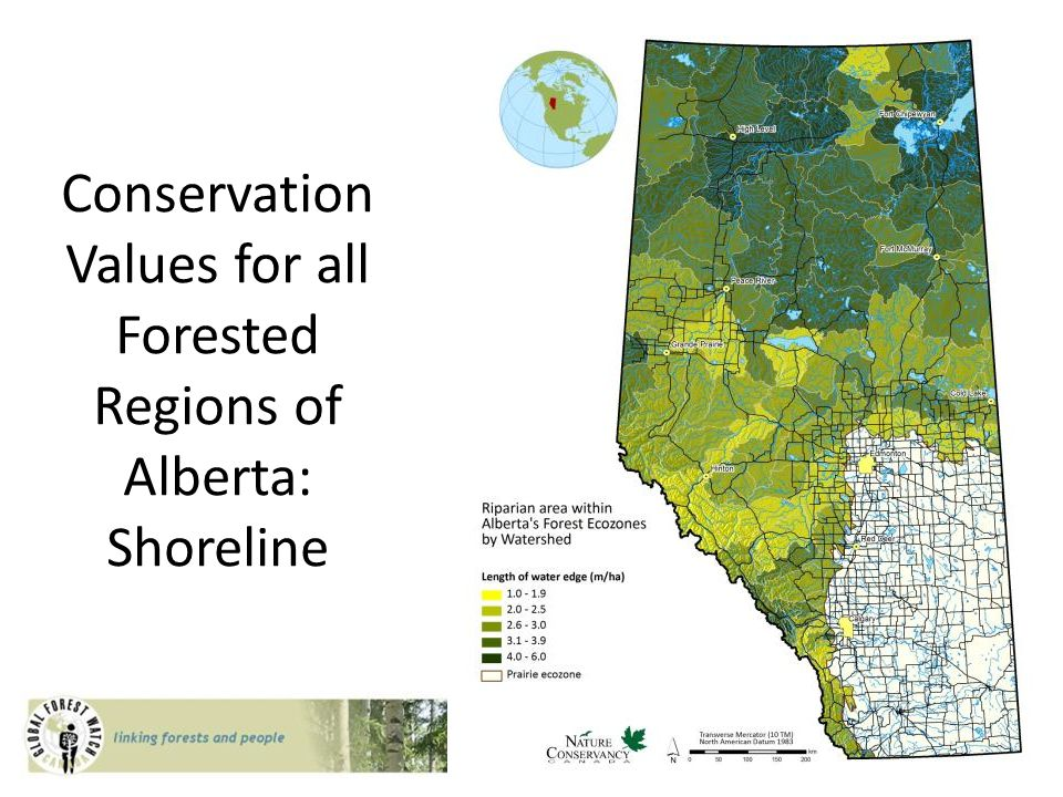 Conservation Values for all Forested Regions of Alberta: Shoreline