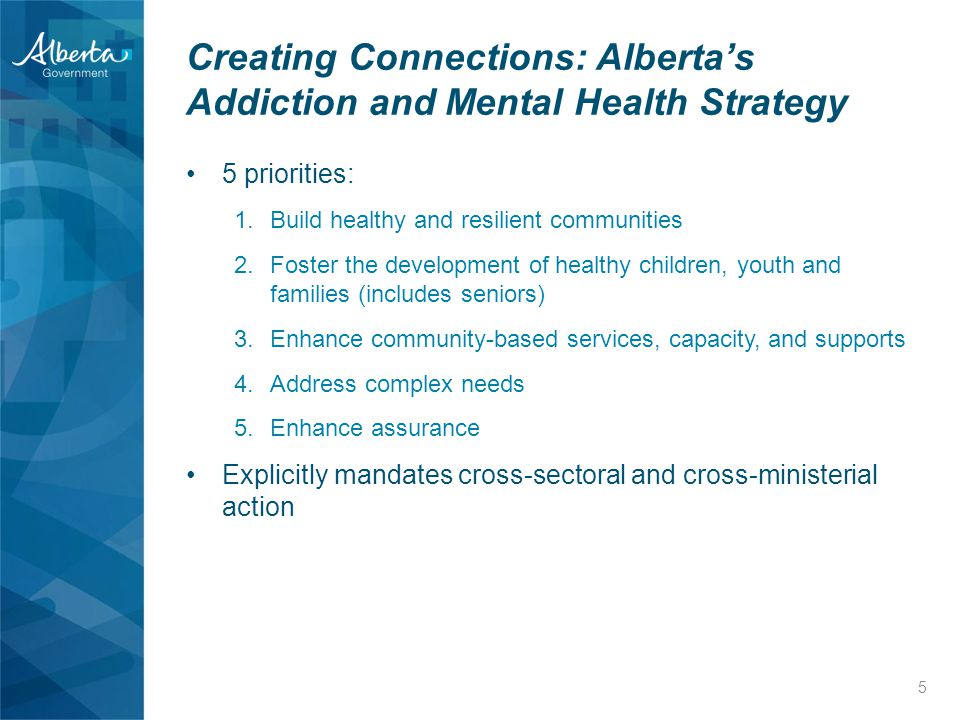 Creating Connections: Alberta's Addiction and Mental Health Strategy 5 priorities: 1.Build healthy and resilient communities 2.Foster the development