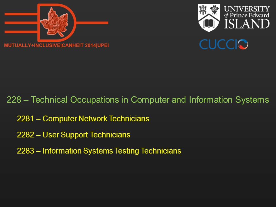 228 – Technical Occupations in Computer and Information Systems 2281 – Computer Network Technicians 2282 – User Support Technicians 2283 – Information
