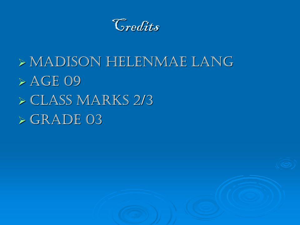 Credits  Madison helenmae lang  Age 09  Class marks 2/3  Grade 03