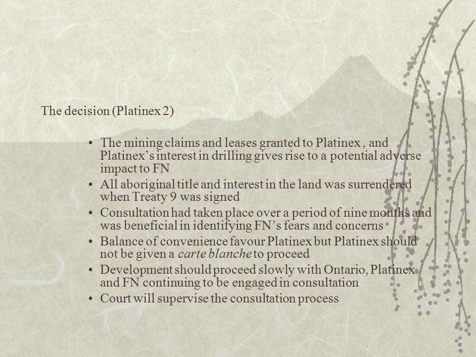 The decision (Platinex 2) The mining claims and leases granted to Platinex, and Platinex's interest in drilling gives rise to a potential adverse impact to FN All aboriginal title and interest in the land was surrendered when Treaty 9 was signed Consultation had taken place over a period of nine months and was beneficial in identifying FN's fears and concerns Balance of convenience favour Platinex but Platinex should not be given a carte blanche to proceed Development should proceed slowly with Ontario, Platinex and FN continuing to be engaged in consultation Court will supervise the consultation process