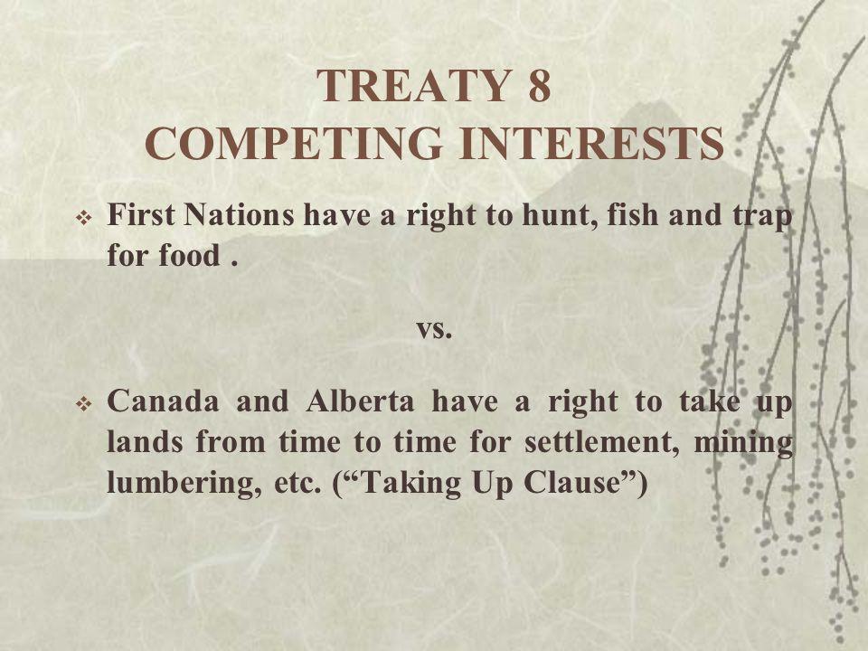 Injunctions Platinex v.Kitchenuhmaykoosib Inninuwug First Nation, [2006] O.J.
