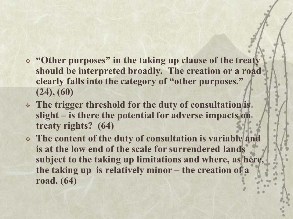  Other purposes in the taking up clause of the treaty should be interpreted broadly.