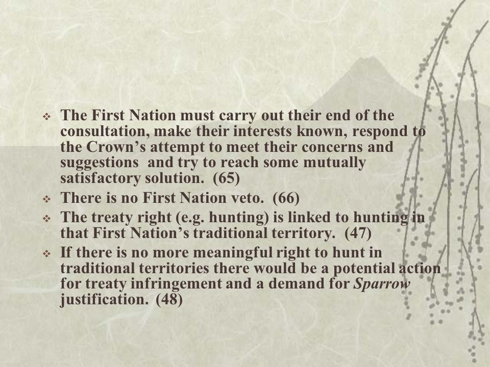  The First Nation must carry out their end of the consultation, make their interests known, respond to the Crown's attempt to meet their concerns and suggestions and try to reach some mutually satisfactory solution.