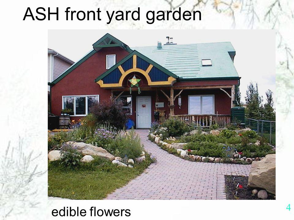 3 ASH Calgary, Alberta, CANADA