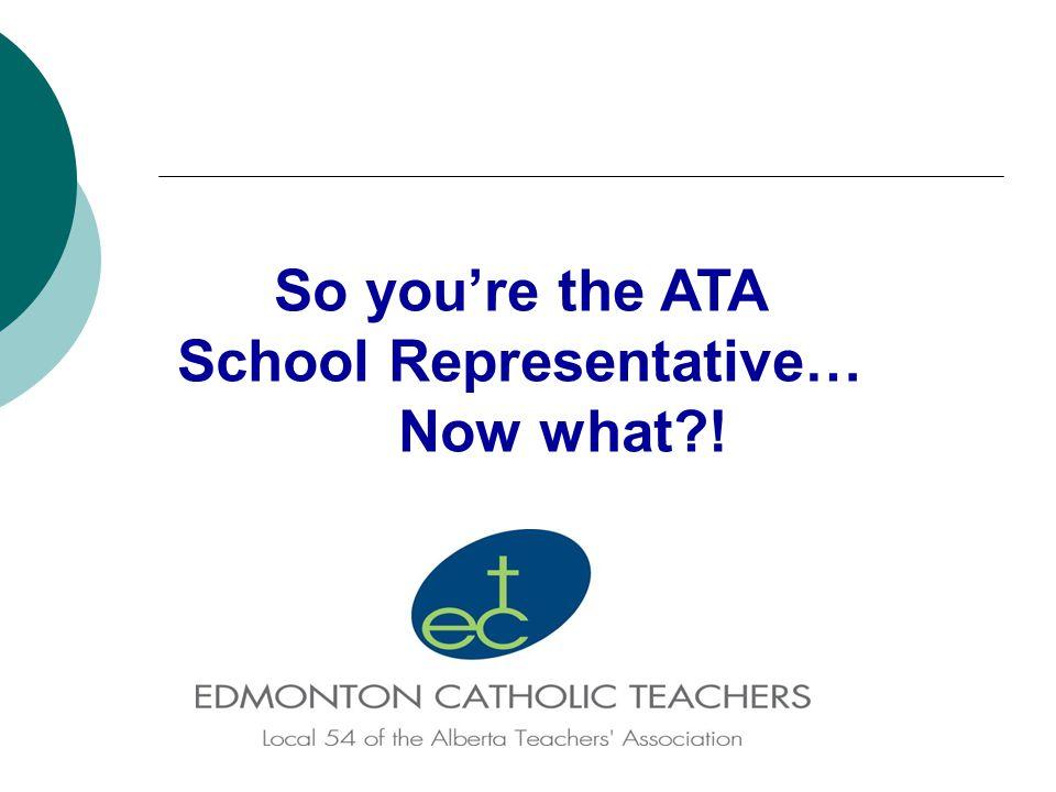 So you're the ATA School Representative… Now what !