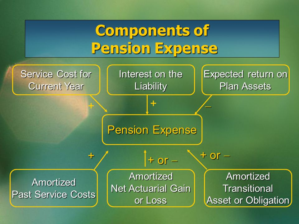 Components of Pension Expense Pension Expense Service Cost for Current Year + Interest on the Liability + Expected return on Plan Assets  Amortized Net Actuarial Gain or Loss + or  Amortized Past Service Costs + AmortizedTransitional Asset or Obligation + or 