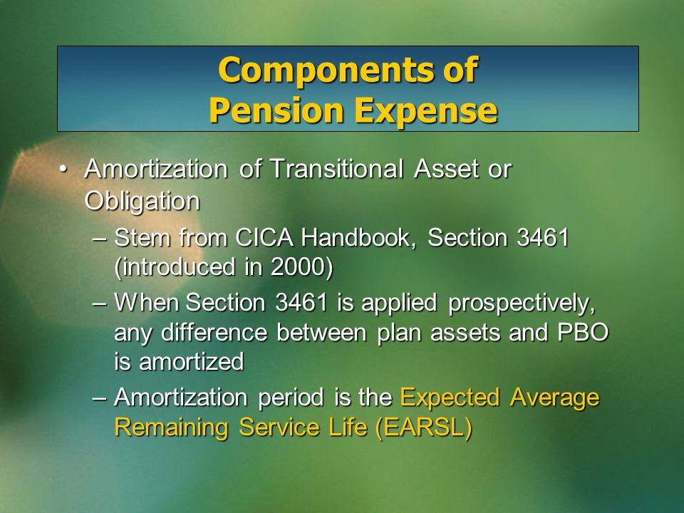 Amortization of Transitional Asset or ObligationAmortization of Transitional Asset or Obligation –Stem from CICA Handbook, Section 3461 (introduced in 2000) –When Section 3461 is applied prospectively, any difference between plan assets and PBO is amortized –Amortization period is the Expected Average Remaining Service Life (EARSL)