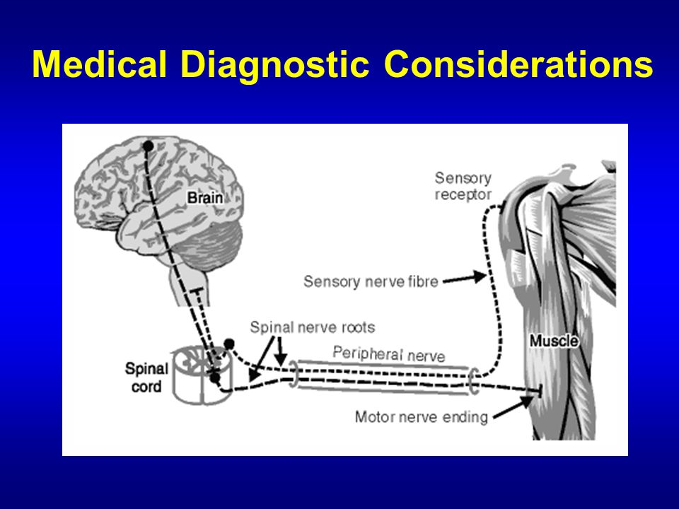Medical Diagnostic Considerations