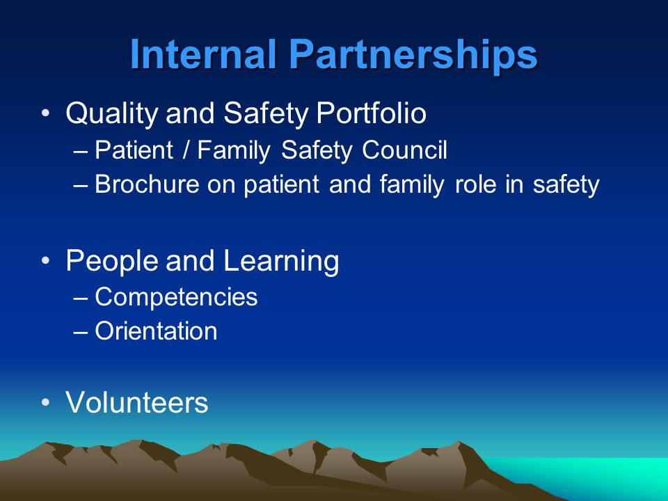 Internal Partnerships Quality and Safety Portfolio –Patient / Family Safety Council –Brochure on patient and family role in safety People and Learning