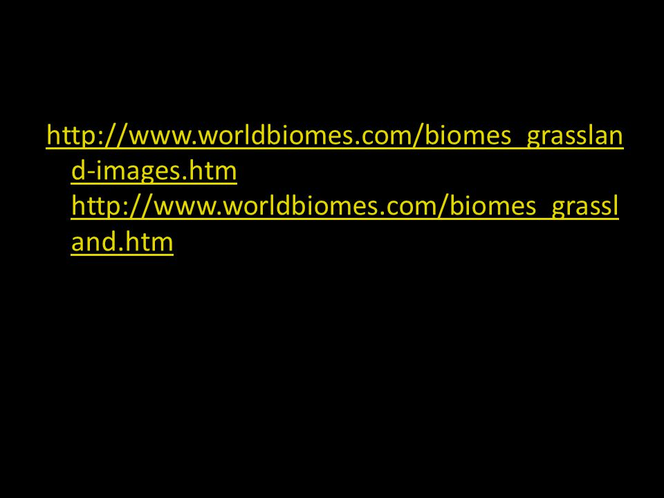 http://www.worldbiomes.com/biomes_grasslan d-images.htm http://www.worldbiomes.com/biomes_grassl and.htm