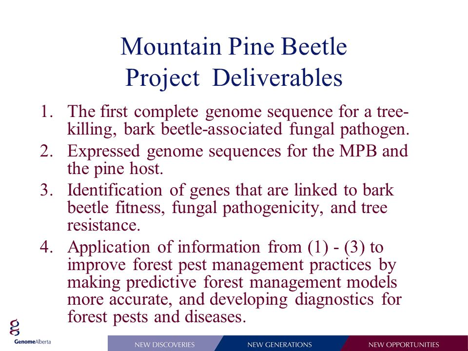 Mountain Pine Beetle Project Deliverables 1.The first complete genome sequence for a tree- killing, bark beetle-associated fungal pathogen.