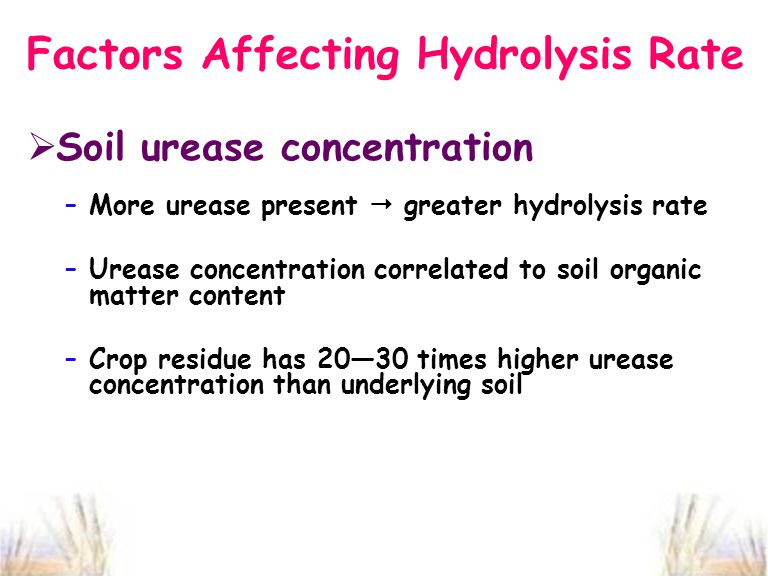 Factors Affecting Hydrolysis Rate  Soil urease concentration –More urease present  greater hydrolysis rate –Urease concentration correlated to soil organic matter content –Crop residue has 20—30 times higher urease concentration than underlying soil
