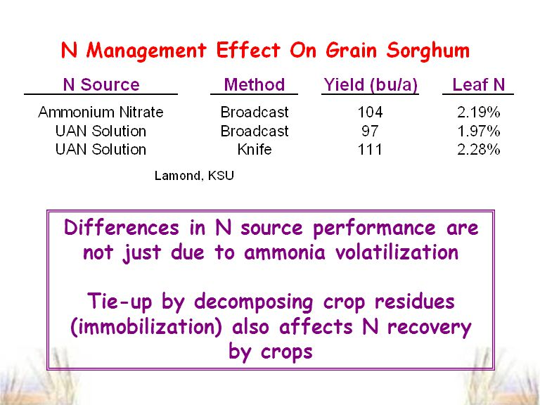 Differences in N source performance are not just due to ammonia volatilization Tie-up by decomposing crop residues (immobilization) also affects N recovery by crops