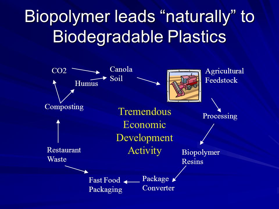 """Biopolymer leads """"naturally"""" to Biodegradable Plastics Canola Soil Agricultural Feedstock Processing Biopolymer Resins Package Converter Fast Food Pac"""